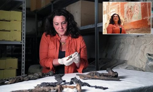 Pompeii victim was styling her hair when lava hit, historian says