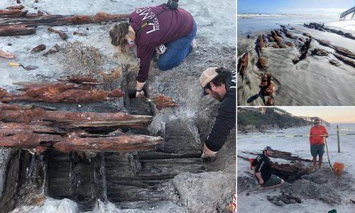 Wreck of 200-year-old cargo ship is found buried on a Florida beach