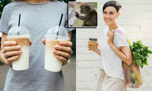 Coffee cups to be BANNED in war on single-use plastics