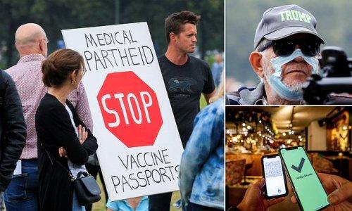 Dutch protestors demonstrate against Covid passports