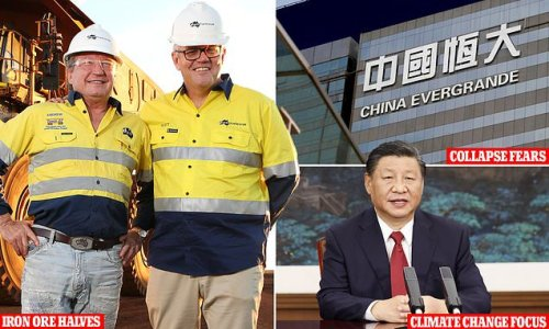 China biggest worry as prices for Australia's biggest export halve