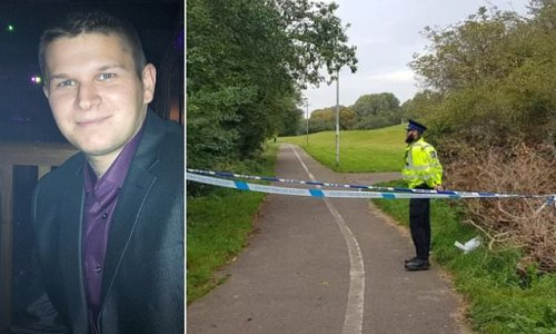 Teenage boy, 17, is charged with murder after man, 33, was killed