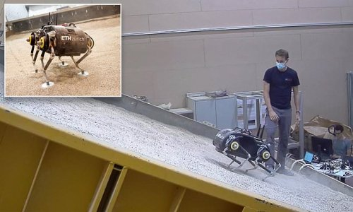 'Spacebok' could be the first four-legged robot to WALK on Mars