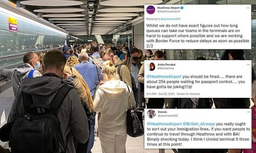 Passengers rage at 'shocking' queues at Heathrow in YET MORE delays