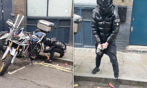 Cyclist confronts London motorbike thieves in broad daylight
