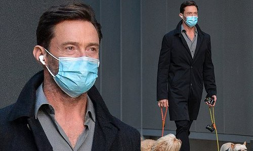 Hugh Jackman enjoys low-key stroll with his dogs in downtown Manhattan