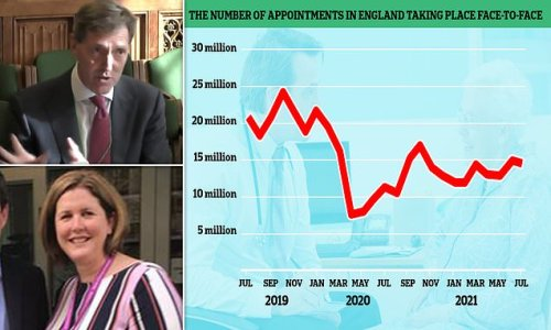 UK's top GP says face-to-face appointments WON'T go back to old levels