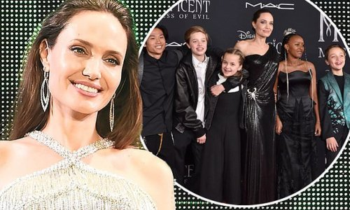 Angelina Jolie says family changes lead to more acting roles