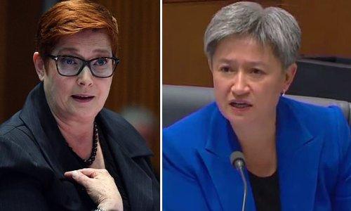Extraordinary moment Penny Wong loses temper during Senate estimates