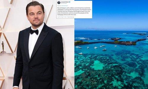 Leonardo DiCaprio pledges $43m to Galapagos Islands conservation