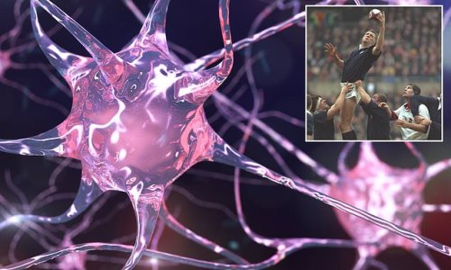 Exercise can increase the risk of motor neurone disease, experts warn