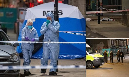 Boy, 17, dies after being found lying on the ground with stab wounds