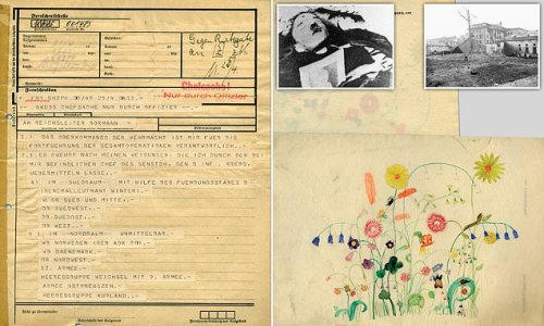 Last messages sent from Hitler's bunker revealed 76 years later