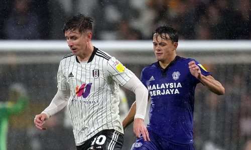 Tom Cairney ends injury hell to hand Fulham 2-0 victory over Cardiff
