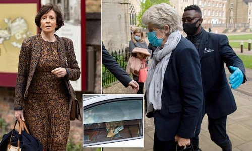 Eyewitness 'saw Lady Lavinia Nourse sexually abuse young boy twice'