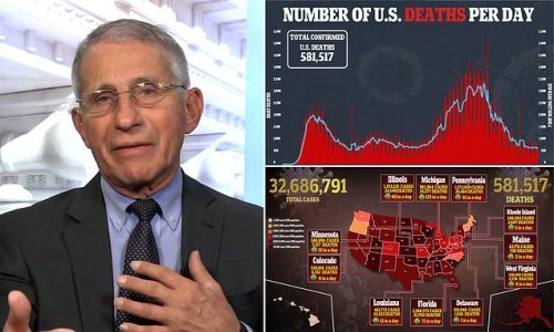 'No doubt' US has undercounted Covid deaths: Fauci