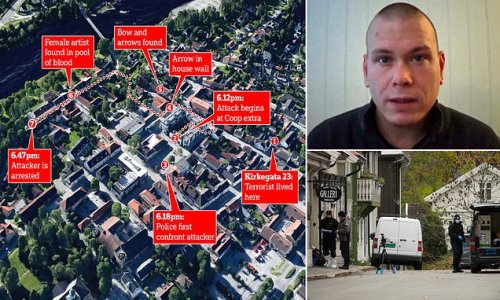 Bow and arrow 'terrorist' killed four victims in their homes in Norway