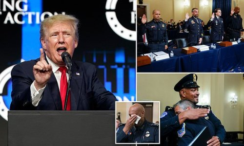 Trump believes cops who've spoken out about January 6 are 'p***ies'