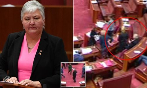 Senator denies being 'maggoted' as footage shows her escorted out