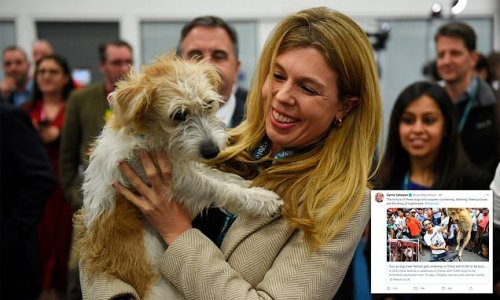 Carrie Johnson blasts China over 'sickening' dog eating festival