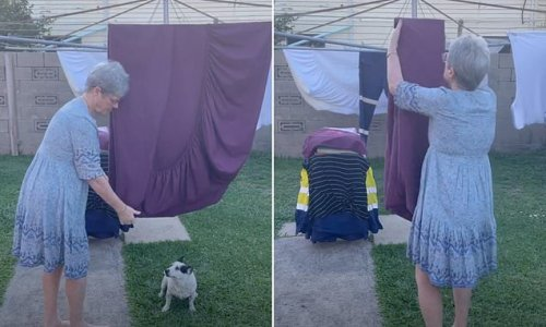Grandma reveals how to fold a fitted sheet using a washing line