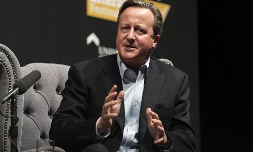 David Cameron's emails to head of NHSX on behalf of Greensill Capital