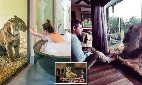 Jamala Wildlife Lodge the luxurious hotel where you sleep with animals