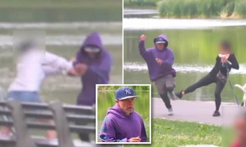 Video captures Central Park mugger stealing phone in broad daylight