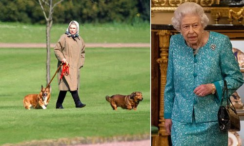 Queen is unable to walk corgis after being told to rest by doctors