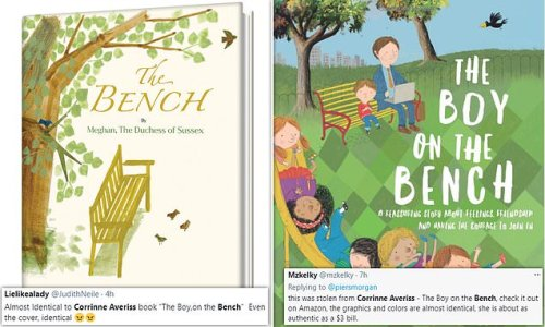 Did Meghan Markle COPY children's author with The Bench?