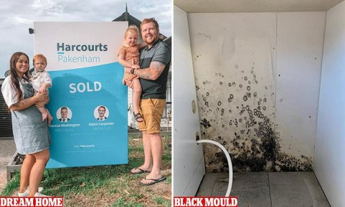 Family desperate after buying home infested with black mould