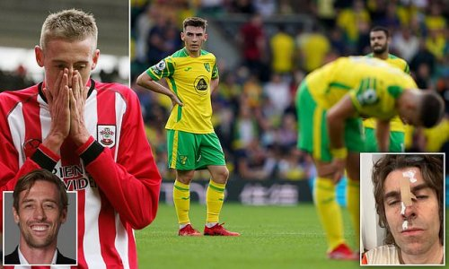 PETER CROUCH: Farke has huge job trying to stop Norwich going down