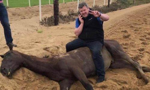 Disgraced Gordon Elliott will have his licence returned on Thursday