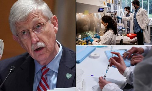 Nearly $470M will be spent on unprecedented US study of 'long COVID'