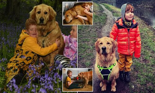 Blind boy, 6, becomes best pals with his Golden Retriever 'buddy dog'