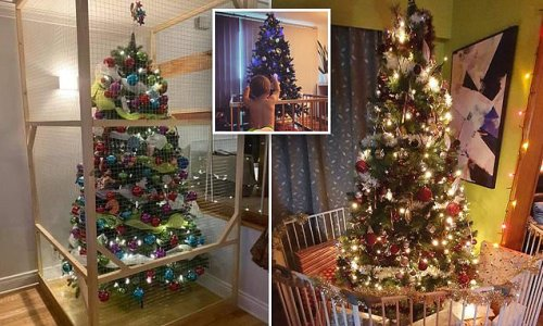 Mum's solution to stopping her toddler ruining her Christmas tree
