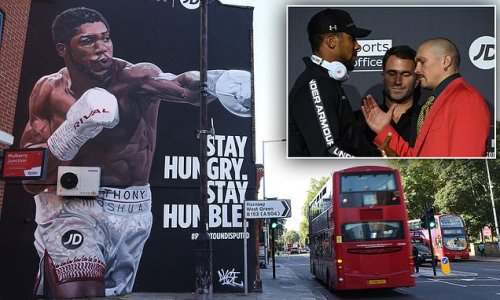 Anthony Joshua 'honoured' as stunning mural is unveiled in Tottenham