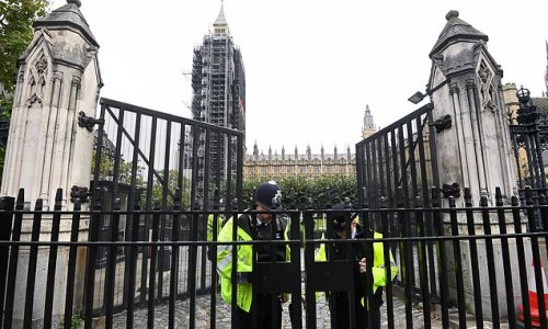 Man caught with mystery liquid sparks Parliament acid attack scare