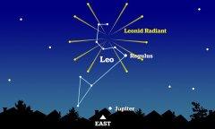 Discover leonid meteor