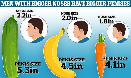 Men with large NOSES tend to have bigger penises, study reveals