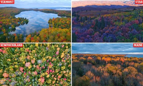 Watch this FALL in Maine! Drone footage captures New England