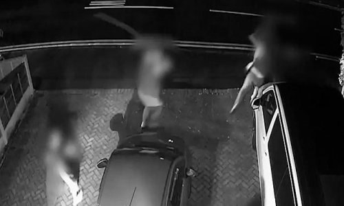 Moment father-of-two chases two car thieves off with TREE LOPPER