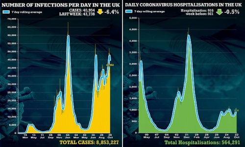 UK's daily Covid cases fall for 3rd day in row and admissions plateau