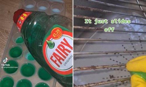 The unusual cleaning hack using frozen dishwashing liquid