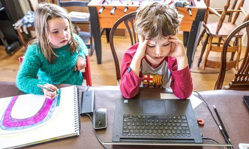 Primary school pupils learned 'little or nothing' from online lessons