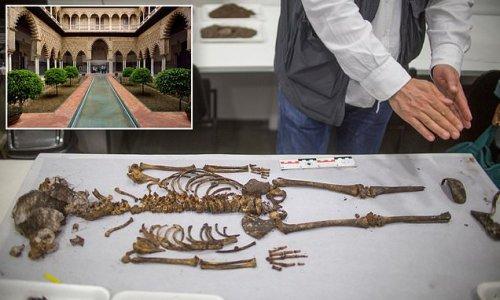 14th-century child's coffin found under floor of palace in Seville