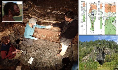 Siberian cave may have hosted humans, Denisovans and Neanderthals