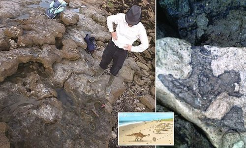 Footprints of the last dinosaurs on UK soil are discovered near Dover