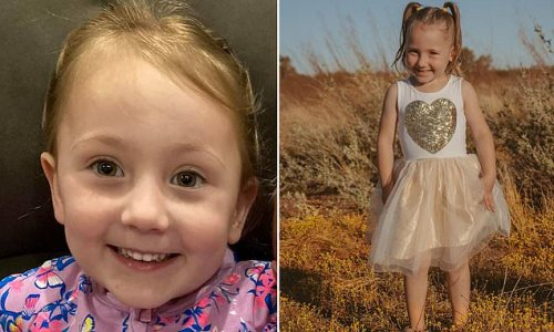 Desperate search continues for girl, 4, who went missing from campsite