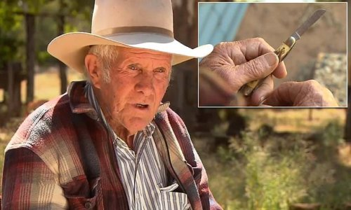 True blue Aussie bushman is fined $100 for carrying a POCKET KNIFE